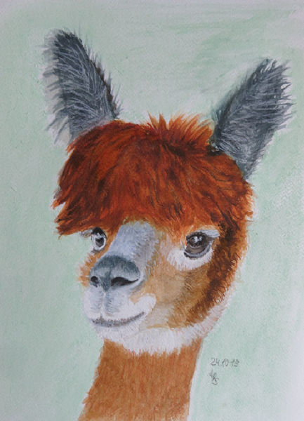 Alpaka, Aquarellmalerei, Tiere, Aquarell