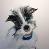 Hund, Halsband, Farben, Aquarell