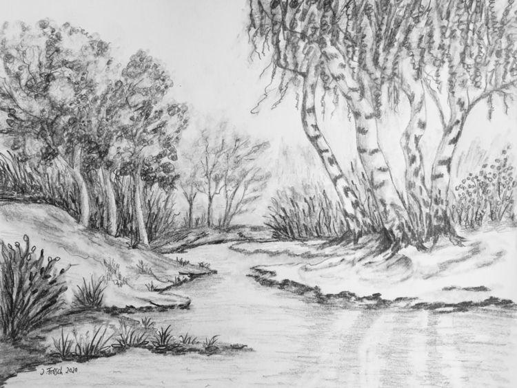 Wasser, Bach, Baum, Fluss, Birken, Ufer