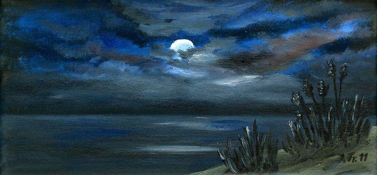 Meer, Mondschein, Dünen, Mond, Nacht, Himmel