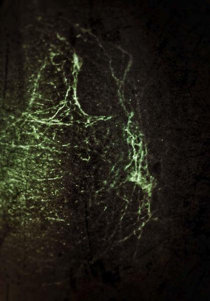 Fotografie, Abstrakt, Zufall