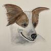 Surreal, Hund, Aquarellmalerei, Portrait