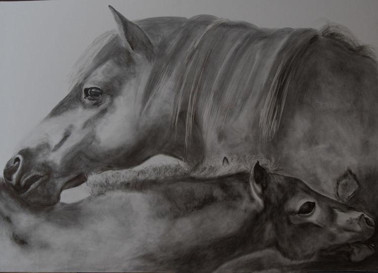Bleistiftzeichnung, Tiere, Natur, Zeichnungen, Wild