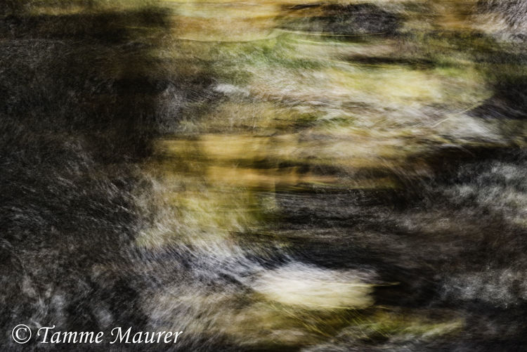 Strudel, Abstrakt, Dynamik, Landschaft, Weiß, Abstrakte fotografie
