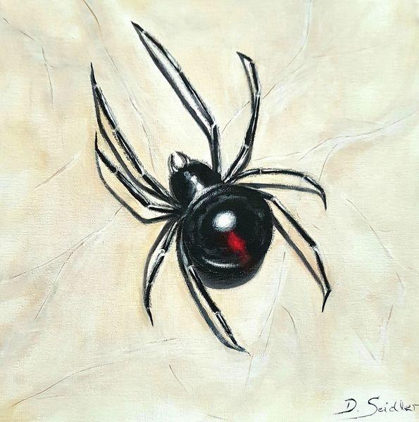 Schwarze witwe, Spinne, Malerei