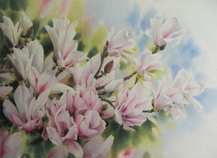 Magnolien, Blumen, Pflanzen, Aquarell