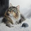 Katze, Tiere, Kater, Aquarell