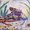Amphibien, Biotop, Frosch, Kröte