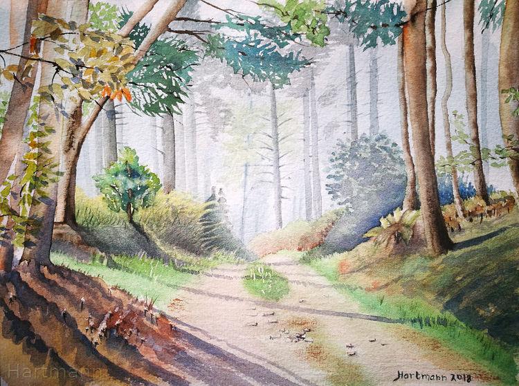 Schatten, Aquarellmalerei, Hattingen, Wald, Aquarell, Waldweg