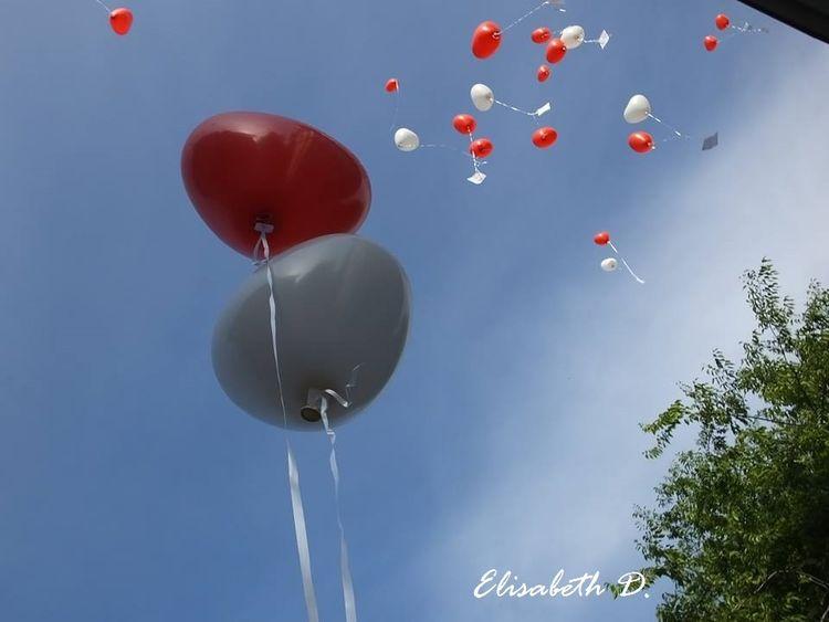 Fotografie, Rot, Fliegen, Blau, Luft, Liebe