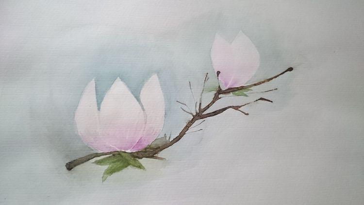 Natur, Blüte, Magnolien, Aquarell