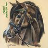 Pferde, Realismus, Pferdeliebe, Pastellmalerei