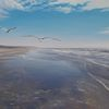 Realismus, Strand, Landschaft, Licht