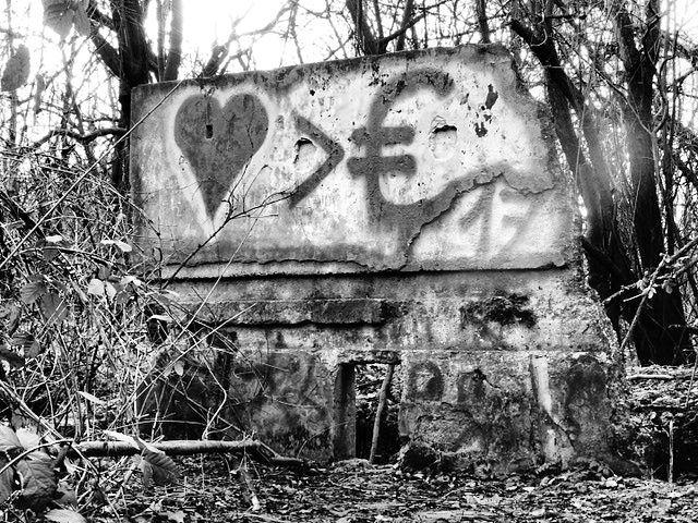 Natur, Liebe, Geld, Fotografie