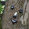 Gesicht, Baum, Natur, Fotografie