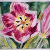 Frühling, Tulpen, Rosa, Aquarell