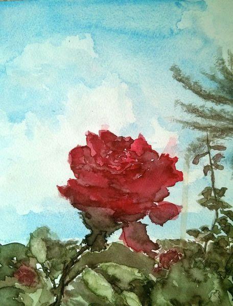 Garten, Blumen, Aquarell,