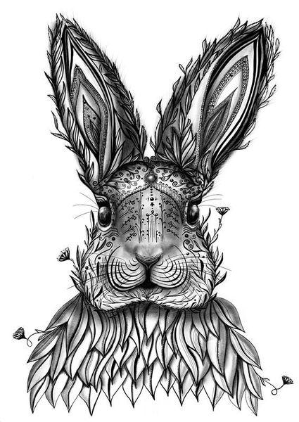 Hase, Botanik, Kaninchen, Blumen, Wal, Tiere