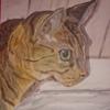 Wand, Augen, Katze, Malerei