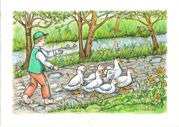 Ente, Junge, Weg, Bach, Illustrationen, Teich