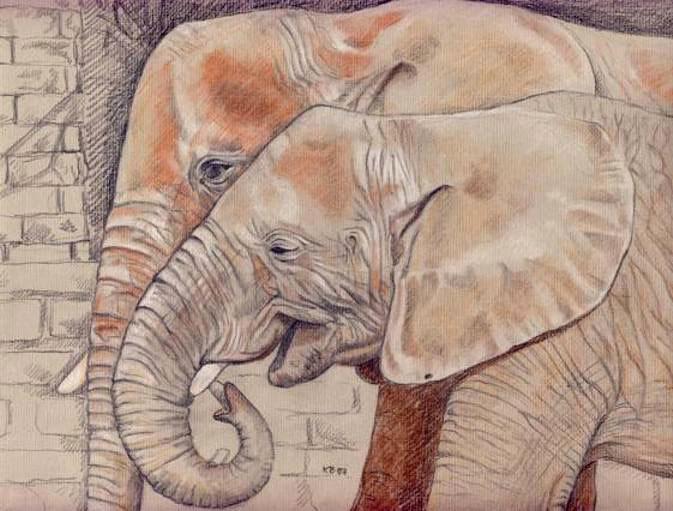 Elefant, Rot, Berge, Rüssel, Zeichnungen, Zoo