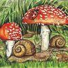 Fliegenpilz, Schnecke, Marienkäfer, Aquarell