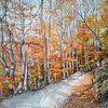 Herbst, Jena, Sonne, Wald