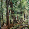 Thüringer wald, Ölmalerei, Malerei, Landschaft