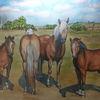 Pferde, Weide, Landschaft, Himmel