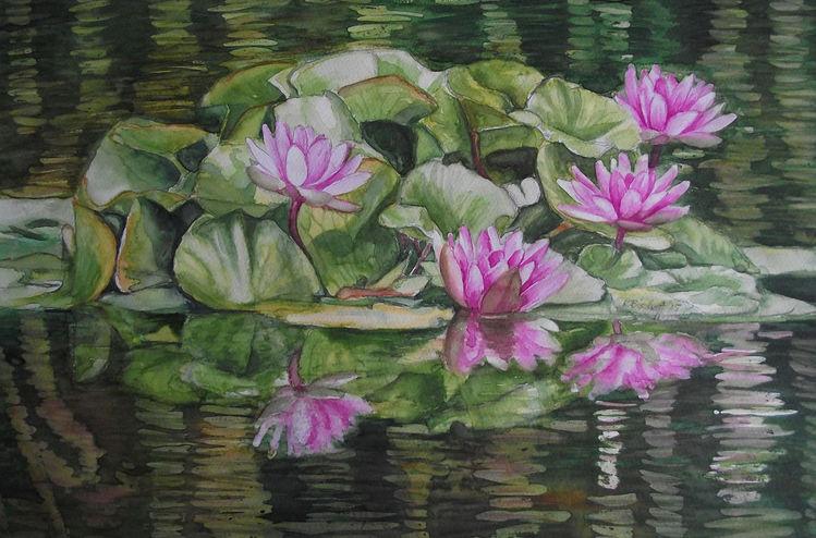 Natur, Aquarellmalerei, Wasser, Seerosen, Aquarell