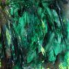Natur, Grün, Steinpapier, Malerei