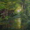 Wald, Fluss, Licht, Grün