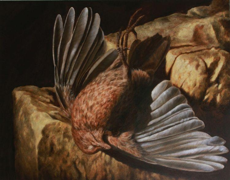 Ölmalerei, Vogelstilleben, Amsel, Barock, Vogel, Tod