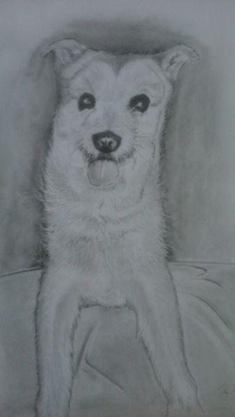 Hund, Zeichnung, Tiere, Zeichnungen