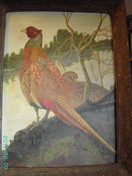Malerei, Vogel, Natur,