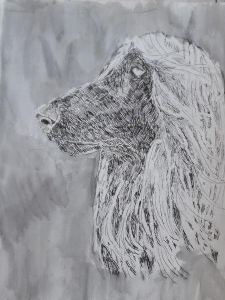 Zeichnung, Hund, Marker, Portrait, Illustrationen,