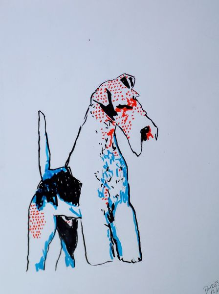 Tiere, Fox terrier, Hund, Pop, Illustrationen,
