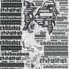 Tiere, Typographie, Hund, Digitale kunst