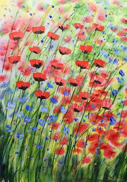 Klatschmohn, Lila, Kunstsammler, Blau, Blumengarten, Blumen