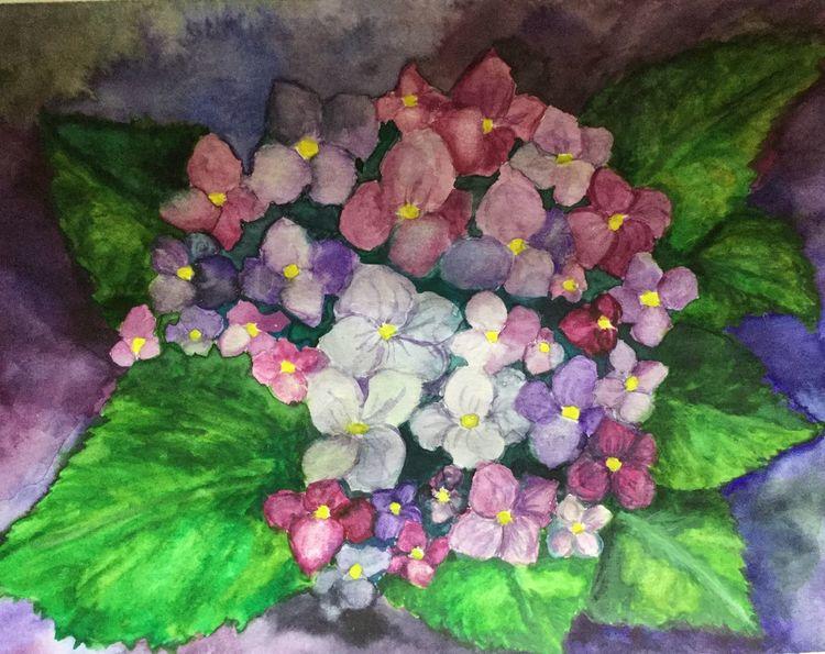 Blumen, Zeichnung, Natur, Hortensien, Aquarell