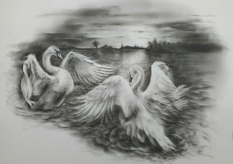 Schwan, See, Dämmerung, Sonnenuntergang, Schwarz weiß, Malerei