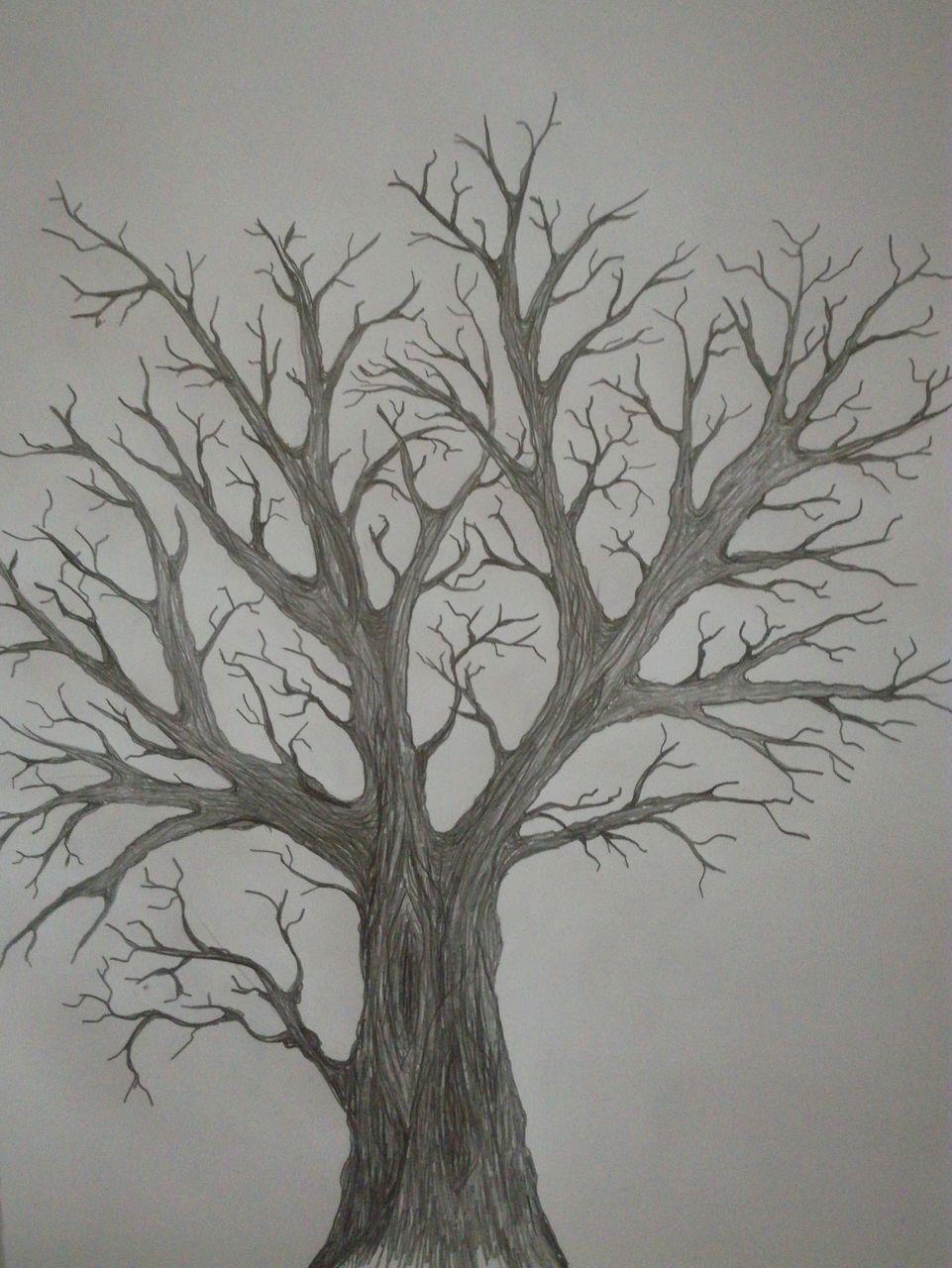 Einsamer Baum Nach Herbst Einsamkeit Winter Ende Baum Von