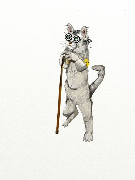 Kater, Blind, Gebrechlich, Illustration, Digitale kunst, Comic