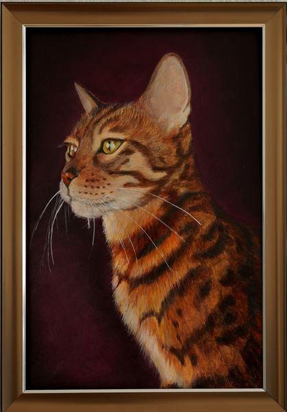 Katze, Bengal, Malerei