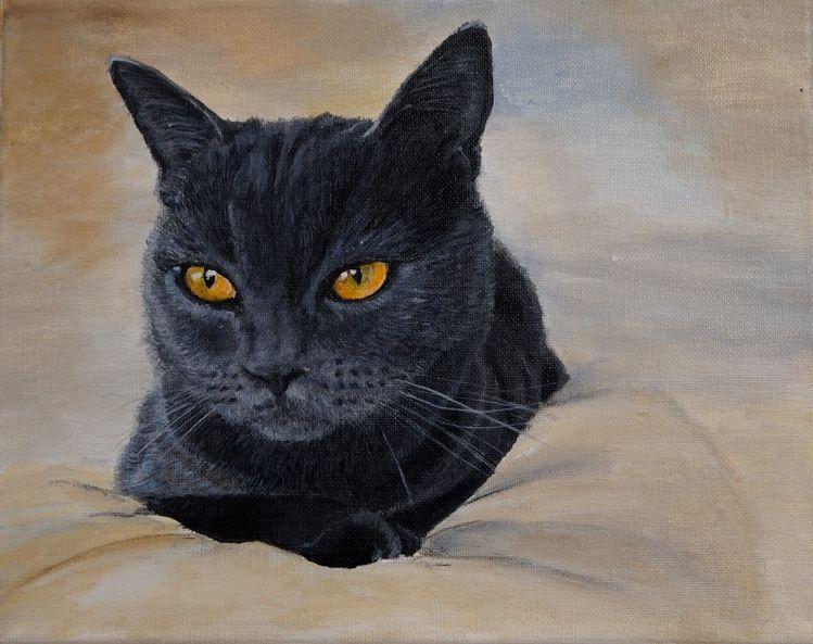 Müde, Katze, Schwarz, Malerei,