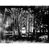 Linoldruck, Melancholie, Lichtblicke, Linolschnitt