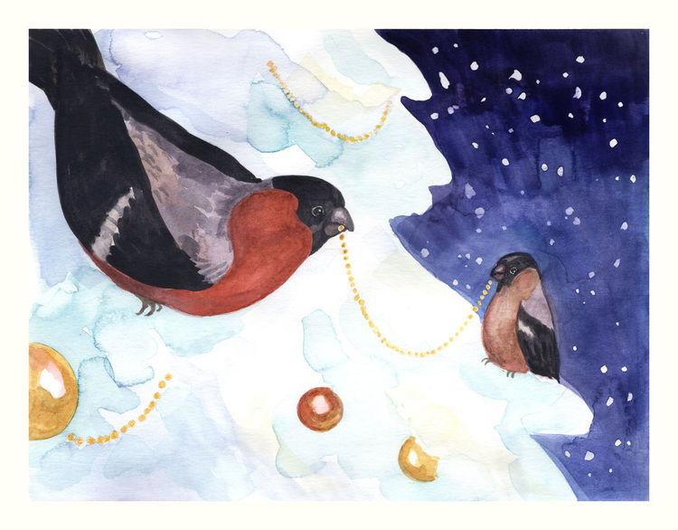 Vogel, Dompfaff, Winter, Weihnachten, Gimpel, Baum