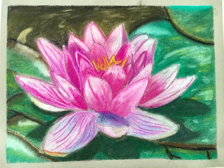Lotos, Pastells, Pink, Natur, Blumen, Malerei
