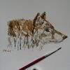 Tiere, Waldtiere, Wolf, Wold tiere