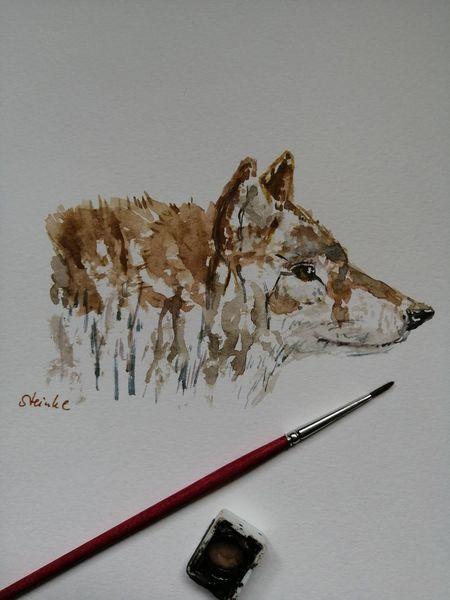 Aquarellmalerei, Wald, Tiere, Waldtiere, Wolf, Wold tiere
